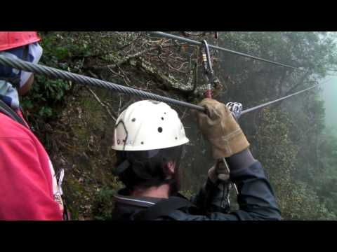Ziplining through South African forest
