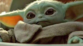 Everything We Know About Baby Yoda's Species