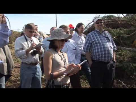 World_Bioenergy_25-27_May_2010.wmv