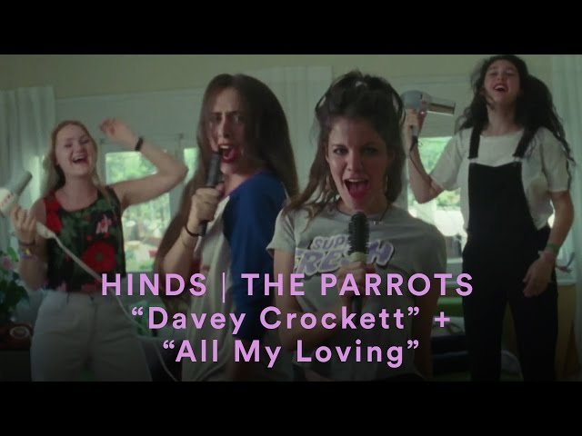 Videoclip de Hinds con The Parrots ''All My Loving.