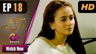 Drama | Is Chand Pe Dagh Nahin - Episode 18 | Aplus ᴴᴰ Dramas | Zarnish Khan, Firdous Jamal width=