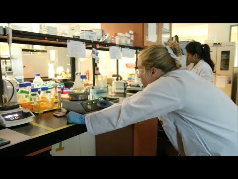 The 2019 International Research Experience for Students through Michigan Tech allowed the third cohort of six students from across the U.S. to explore new ways of communicating their research while abroad in Singapore. The multidisciplinary cohort explored the interaction of viruses with nanoparticles, antibodies, and osmolytes while communicating aspects of their research and experiences abroad on Twitter and Instagram. The project was funded by NSF 1559445 and the generous support of the National University of Singapore. For more information about the project, visit http://iressingapore.mtu.edu.