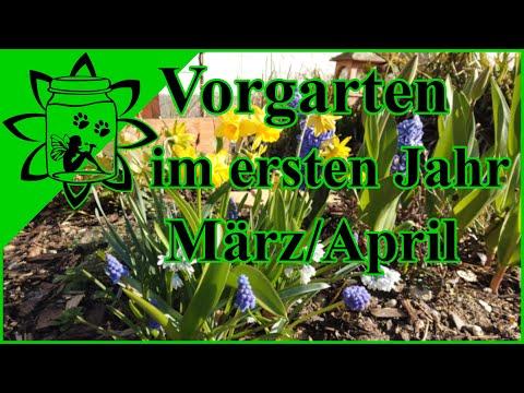 Vorgarten im ersten Jahr | bienenfreundliche Blumen | Kräuter Knoblauch und co | März April 2020
