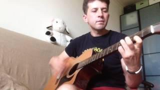 Herr mannelig guitar cover