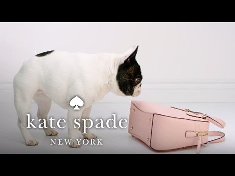 the cameron street collection: stick with me, babe. | kate spade new york