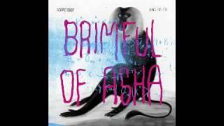 Brimful Of Asha, Naked Ape Bosom Mix, Cornershop