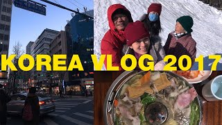 Korea Vlog 2017 | Lotteworld, Food, City