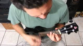 Skin and Bones - Foo Fighters - on ukulele - KzmA