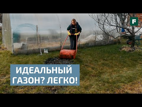 Время сеять: профессиональные и любительские рекомендации для создания газона // FORUMHOUSE