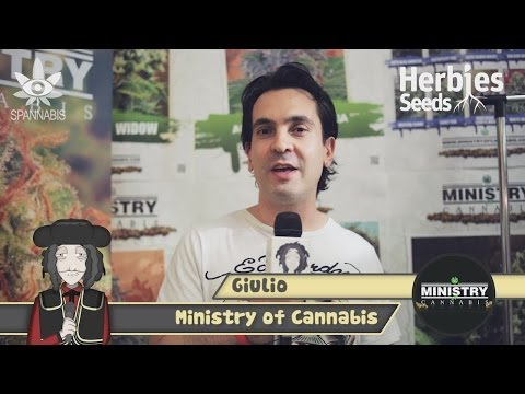 Ministry Of Cannabis @ Spannabis 2014 Barcelona