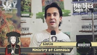Herbie Interviews Ministry Of Cannabis Seeds