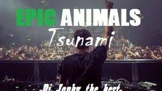 Martin Garrix vs Sandro Silva & Quintino vs DVBBS - Epic Animals & Tsunami (Dj Jonhy remix)