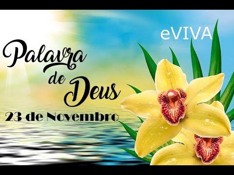 PALAVRA DE DEUS PARA HOJE 23 DE NOVEMBRO eVIVA MENSAGEM MOTIVACIONAL PARA REFLEXÃO DE VIDA