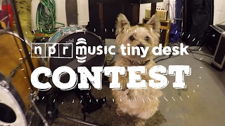 Animal Friends Of The 2017 Tiny Desk Contest