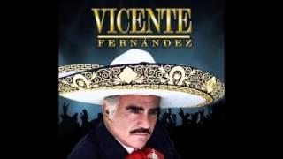 -MI VEJEZ- VICENTE FERNANDEZ (FULL AUDIO)