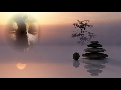 medwyn-goodall-dolphin-companion-music-for-relaxation-meditationmp4-karin-talen