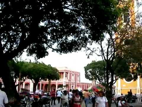 granada – la catedral + random + birds – plaza de la independencia