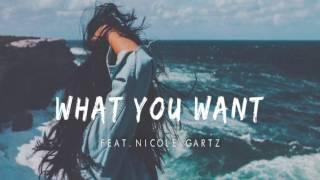 Tim Gartz&Cammora feat  Nicole Gartz - What You Want (Sophill Remix)