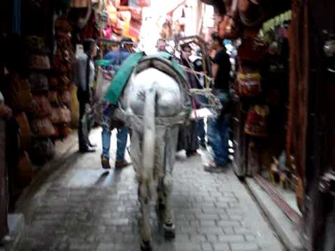 Fès, Morocco – the narrow streets of the medina