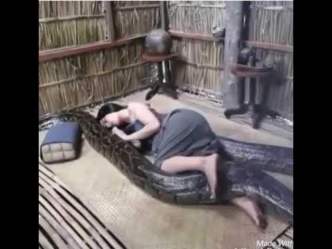 Download Video Heboh. Wanita Bersetubuh Dengan Ular