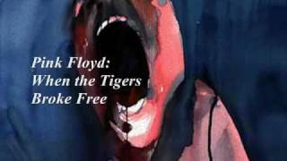 Pink Floyd: When the Tigers Broke Free