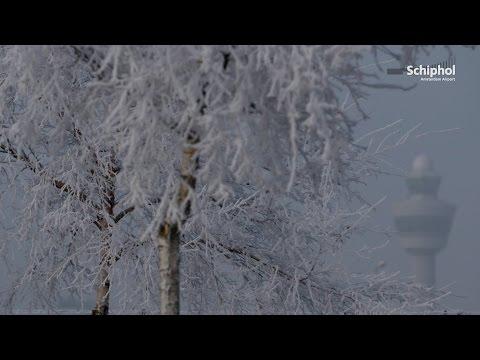 Flying in a winter wonderland...