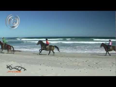 Hermanus horse riding
