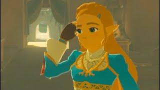 Zelda Meets Riju In Gerudo Town