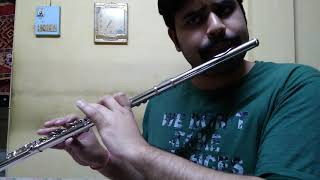 Despacito - Western Concert flute