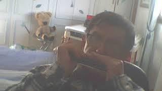 """""""Holidays"""" de Polnaref à l'harmonica chromatique"""