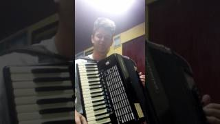 Luis Fonsi - Despacito ft. Daddy Yankee ( cover acordeon )