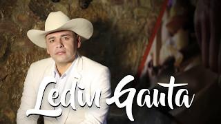 EL Gallo Celoso - Ledin Gauta