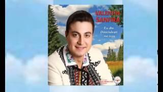 Valentin Sanfira-Taicuta cu par carunt.