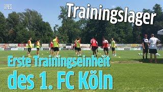 FC-Trainingslager: Heißester Trainingstag des Jahres – FC ackert ohne Modeste