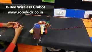 Robokidz Wireless Robots