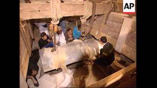 Egypt - Archaeologists open priest's sarcophagus