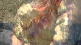 A Bitter Song ~ Kurt Cobain Tribute
