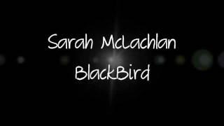 Blackbird- Sarah McLachlan + Lyrics