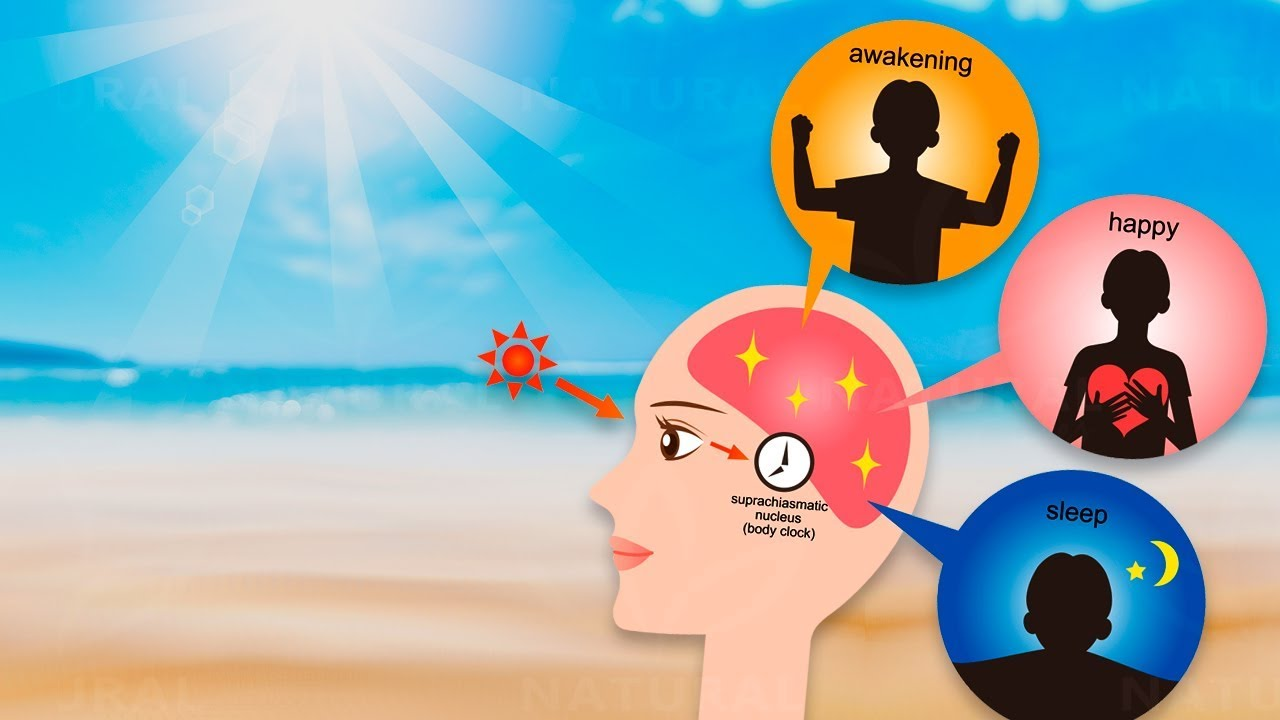 How the Beach Benefits your Health, according to Science