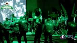 Banda Caña Verde- Tumbando Caña  (Tequila Jal.)