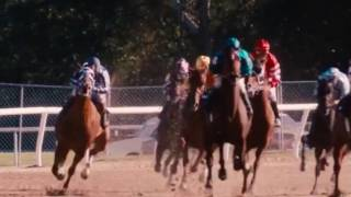 [Battlescars] horse race music video-secretariat