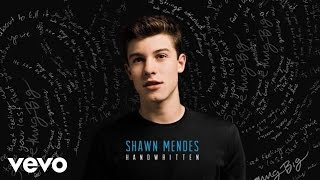 Shawn Mendes - Strings (Audio)