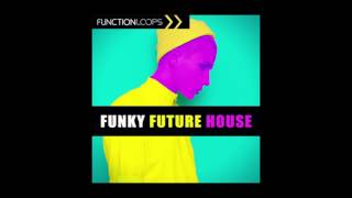 Function Loops - Funky Future House