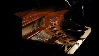 Handmade Piano - Panos Ioannidis' piano workshop promotional video