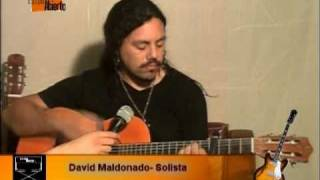 David Maldonado-Angel-Cover de Elefante
