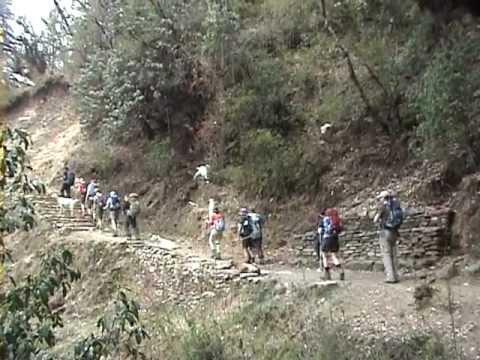 Topas Travel – Nepal – Annapurna Basecamp
