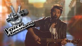 Don't You Worry Child - Carlos Jerez | The Voice 2014 | Live Clash