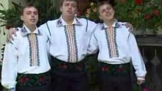 Fraţii Reuţ - Am crescut trei frăţiori