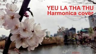 yêu là tha thứ harmonica cover