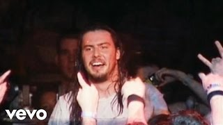 Andrew W.K. - Your Rules